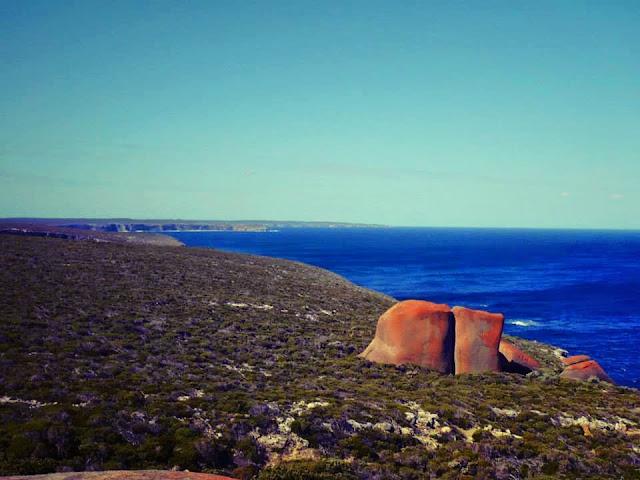 kangaroo island cost