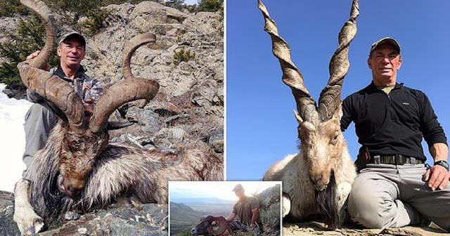 Κυνηγός πλήρωσε 100.000 δολάρια για να σκοτώσει απειλούμενη με εξαφάνιση κατσίκα και προκαλεί οργή