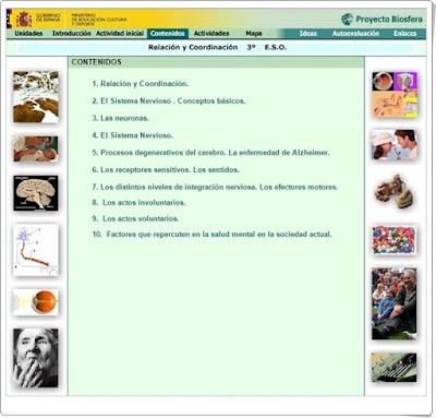 http://recursostic.educacion.es/ciencias/biosfera/web/alumno/3ESO/Relacor/index.htm