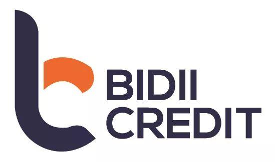 Bidii Credit