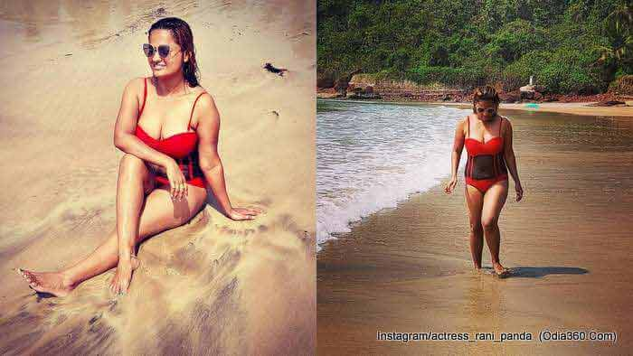 Rani Panda's Wallpapers, Pictures, Images