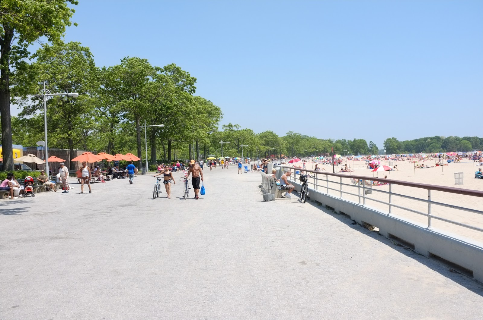 Orchard Beach And City Island
