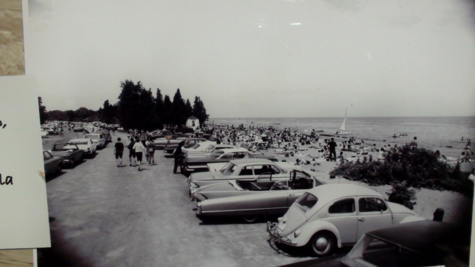 Beach with cars and people.