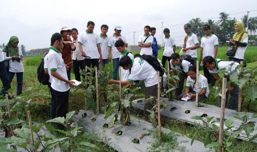 pertanian agribisnis
