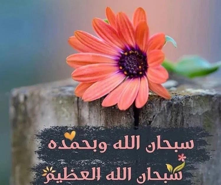 صور سبحان الله وبحمده سبحان الله العظيم 2021