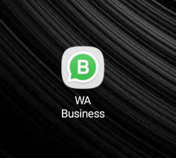 Whatsapp business mobile app logo