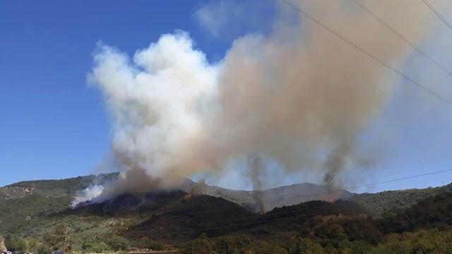 Άρτα: Σε εξέλιξη η φωτιά στην Άρτα -ΦΩΤΟ
