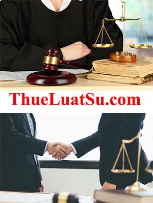 ThueLuatSu.com