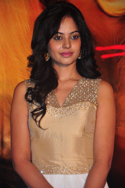 Bindu Madhavi  SAKSHI CHAUDHARY PHOTO GALLERY  | 1.BP.BLOGSPOT.COM  EDUCRATSWEB