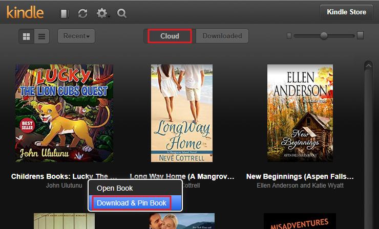 KCR Converter -- Convert Kindle Cloud Reader Books to DRM Free Mobi