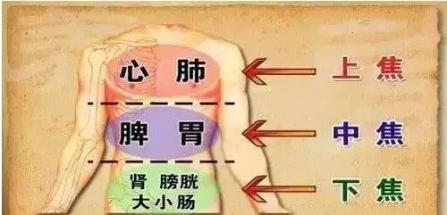 三焦主升降諸氣和通行水液,怕堵!看看你的三焦堵到什麼程度(內分泌系統)
