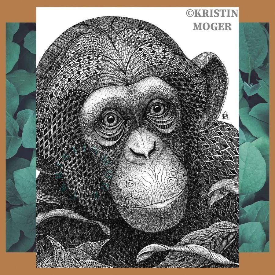 12-Chimp-Chimpanzee-Kristin-Moger-www-designstack-co