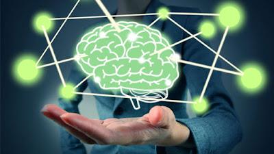 Avances neurociencia últimos tiempos salud