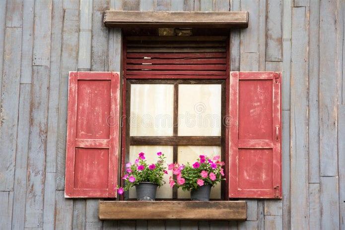 Pencere ve Balkondaki Saksıları Kontrol Edin