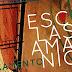 Projeto Escalas Amazônicas: Seminários de Artes Visuais e Políticas Públicas lança livro gratuito em Manaus