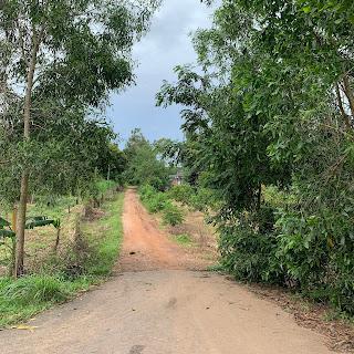 Bán đất đường số 7 Xuân Trường