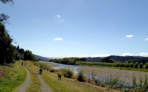 Cycling along the Hutt River, Wellington