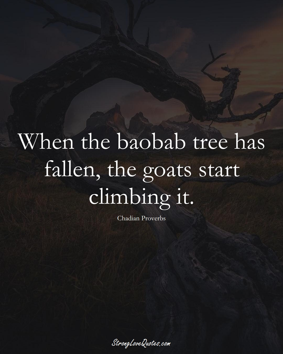 When the baobab tree has fallen, the goats start climbing it. (Chadian Sayings);  #AfricanSayings