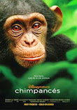 Chimpances online latino 2012 VK
