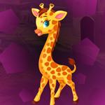 G4K Giraffe Cub Escape
