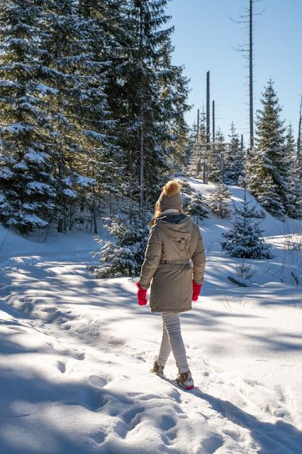 Winterwandern Mauth-Finsterau  Reschbachklause – Siebensteinkopf  Nationalpark Bayerischer Wald 10