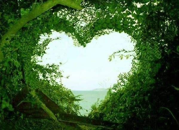 """Live with a green heart"""""""