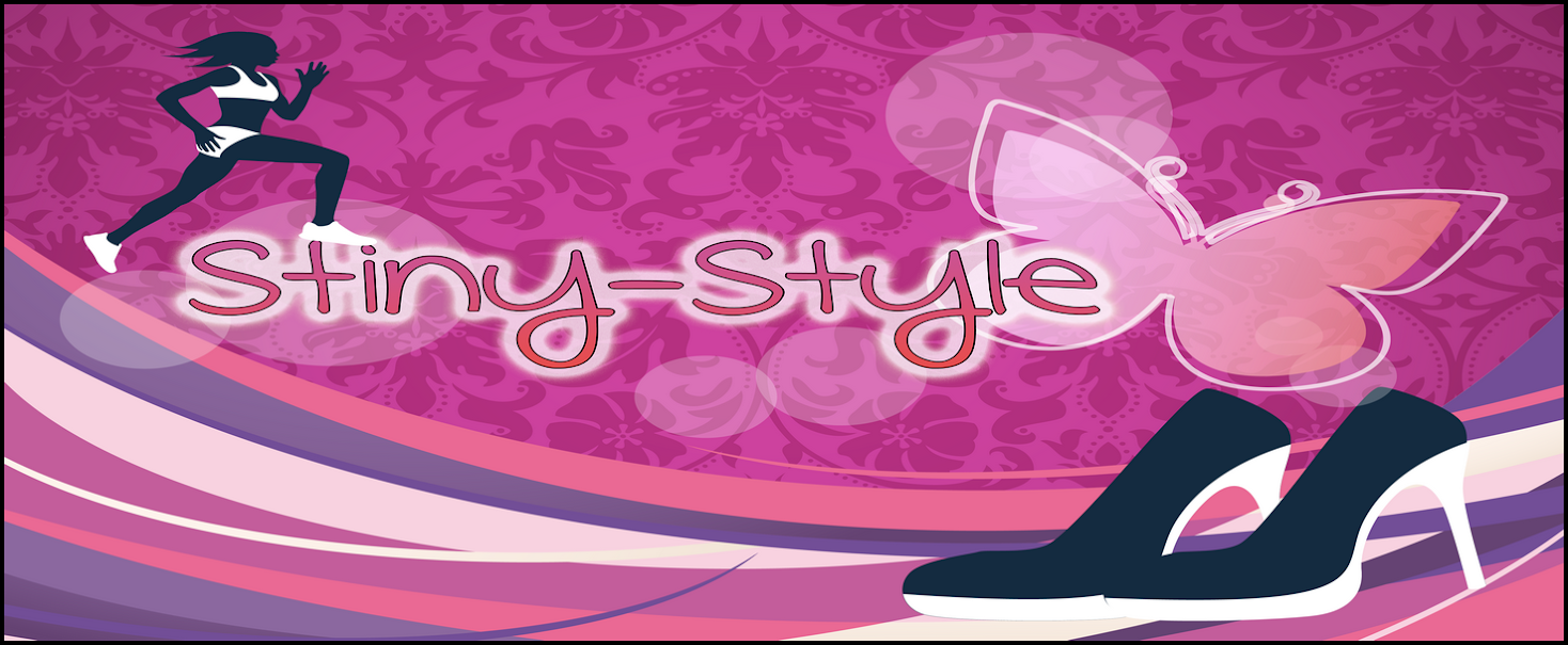 Stiny-Style Blogvorstellung