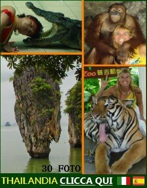 http://vacanzedafavola7.blogspot.it/2014/12/thailandia-puket.html
