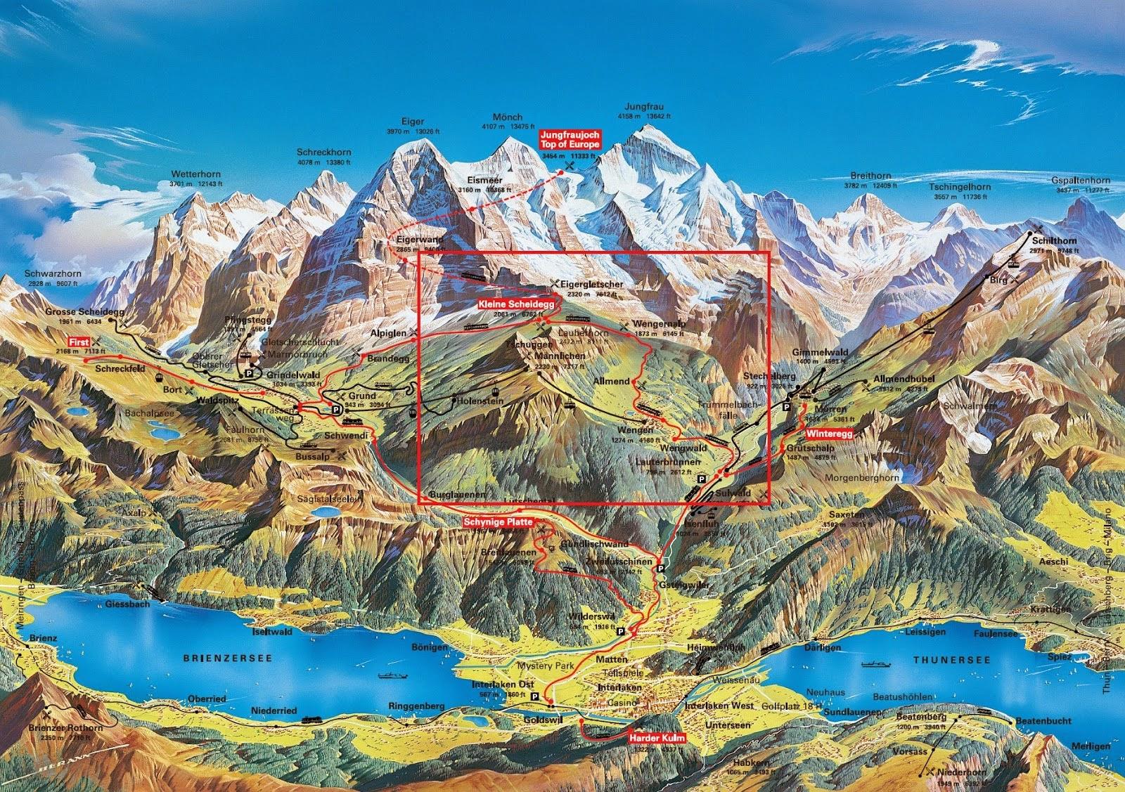 The Ecosystem of the Swiss Alps: Swiss Alps: Alpine Glacial ...