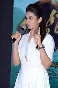 Rakul Preeth at Sarrainodu Success Meet-thumbnail-14