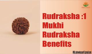 Rudraksha :1 Mukhi Rudraksha Benefits