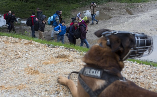 Flüchtlinge in mazedonischen Grenzfluss ertrunken
