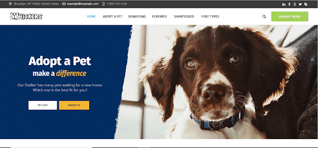 Nonprofit Fundraising & Charity WordPress Themes With Donation System    Whiskers