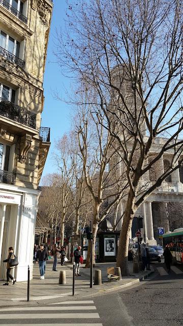 Place St Sulpice, Paris