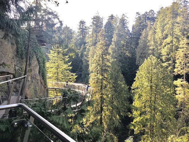 Vancover BC, Suspenson Bridge, Cliffwalk, Capilano Park