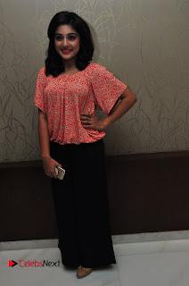 Actress Niveda Thomas Pictures at Gentleman Success Meet  0015