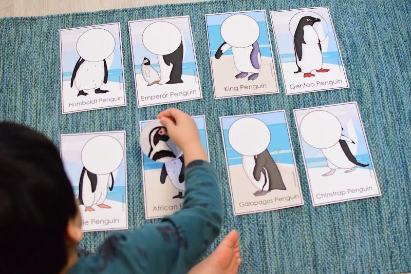 Penguin Themed Unit: Penguin Head Puzzles