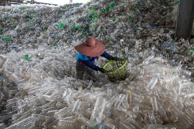A imagem mostra milhões de garrafas plásticas amontoadas. No meio se vê um homem vestindo uma camiseta de manga longa azul e um chapéu grande que cobre sua cabeça. Ele segura nas mãos uma cesta para selecionar essas garrafas. As garrafas são transparentes e algumas são verdes.