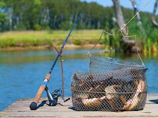 Фото рыбалки