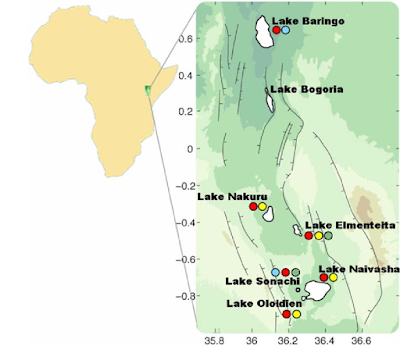 Rift Valley lakes