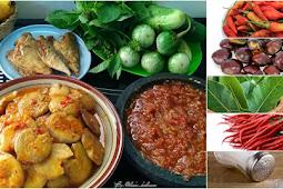 CARA MEMASAK JENGKOL Yang NIKMAT, MUDAH & PASTI Bikin Makan NAMBAH Nerus.