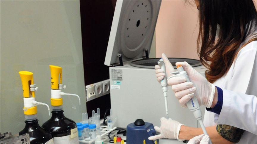 Kan kanserinde immünoterapi ile tedavi başarı artıyor