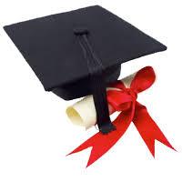 Image result for degree programme