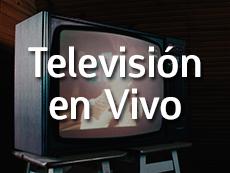 Televisión en Vivo Roku