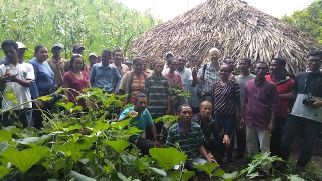 Misereor & Tana Nua :Tolak Sistem Pertanian Berbasis Kimia, Pertahankan Budaya Lokal