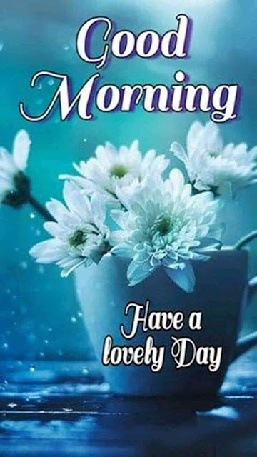 """good morning have a nice day"" ""good morning have a nice day quotes"" ""good morning have a beautiful day"" ""good morning have a great day"" ""good morning have a nice day images hd"" ""good morning have a great day quotes"" ""good morning have a good day"" ""good morning wishes"""