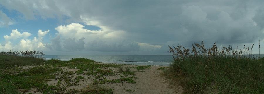En las reservas naturales junto al mar