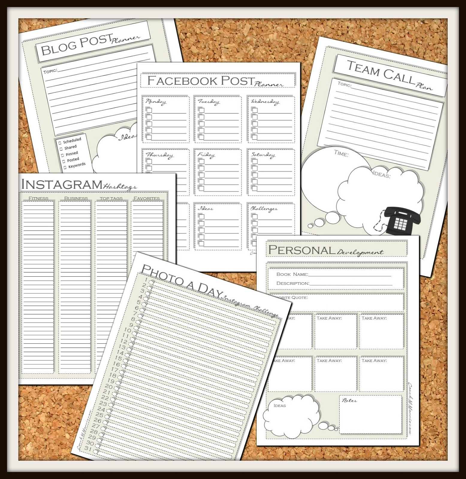Fitness Gram Worksheet