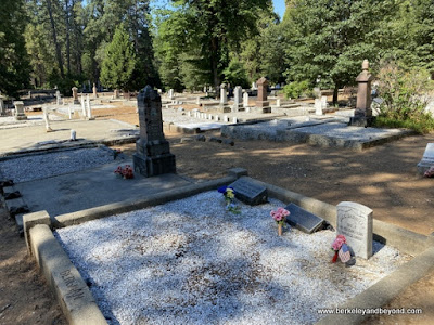 overview of Pine Grove Cemetery in Nevada City, California