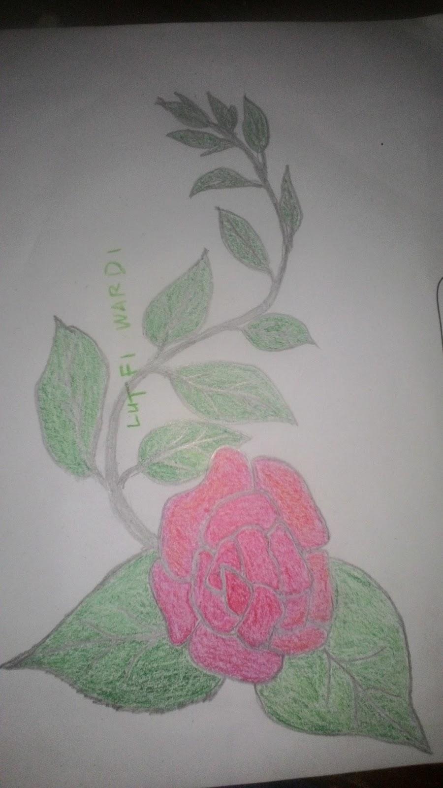 Cara Gambar Bunga Mawar Dengan Pensil Informasi Seputar Tanaman Hias